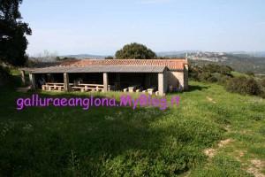 Chiesa campestre di Sant'Andrea apostolo - Luogosanto (OT)